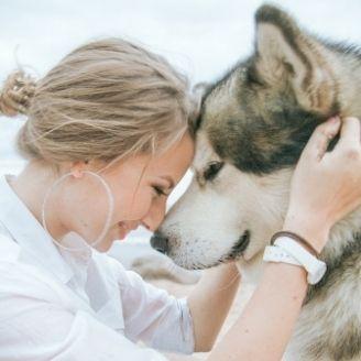 dog-walker-pet-sitter-jobs-bournemouth-pet