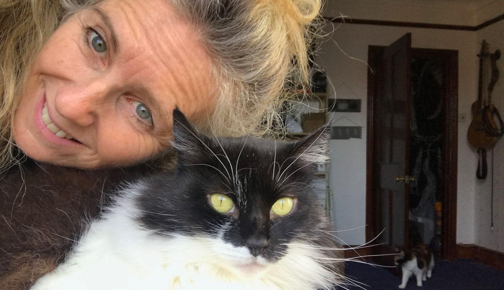 kind-cat-sitter-southbourne
